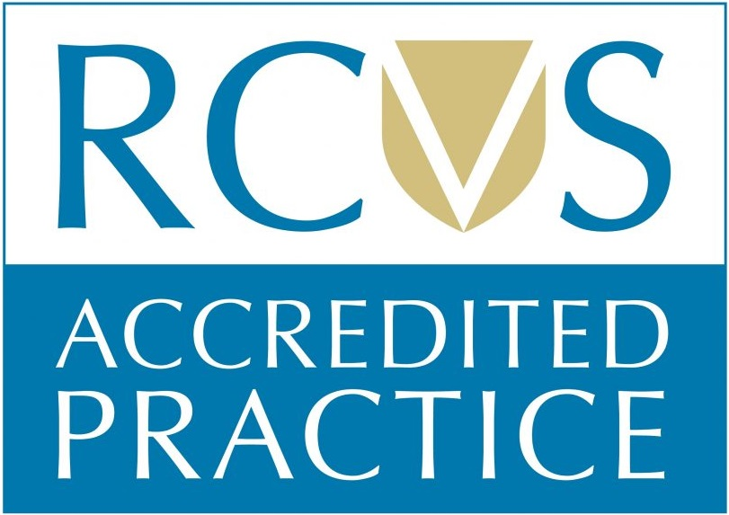 RCVS Accreditated